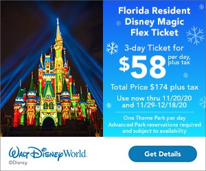 Florida Resident Disney Magic Flex Ticket 3-Day Ticket For $58 Per Day, Plus Tax