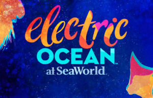 Party Each Summer Night at SeaWorld Orlando's Electric Ocean